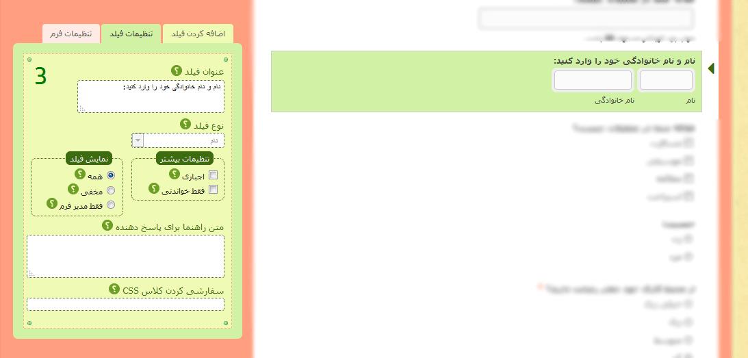 تنظیمات فیلد نام- راهنمای هر قسمت با علامت سوال مشخص شده است