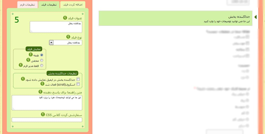 تنظیمات فیلد جداکننده بخش- راهنمای هر قسمت با علامت سوال مشخص شده است